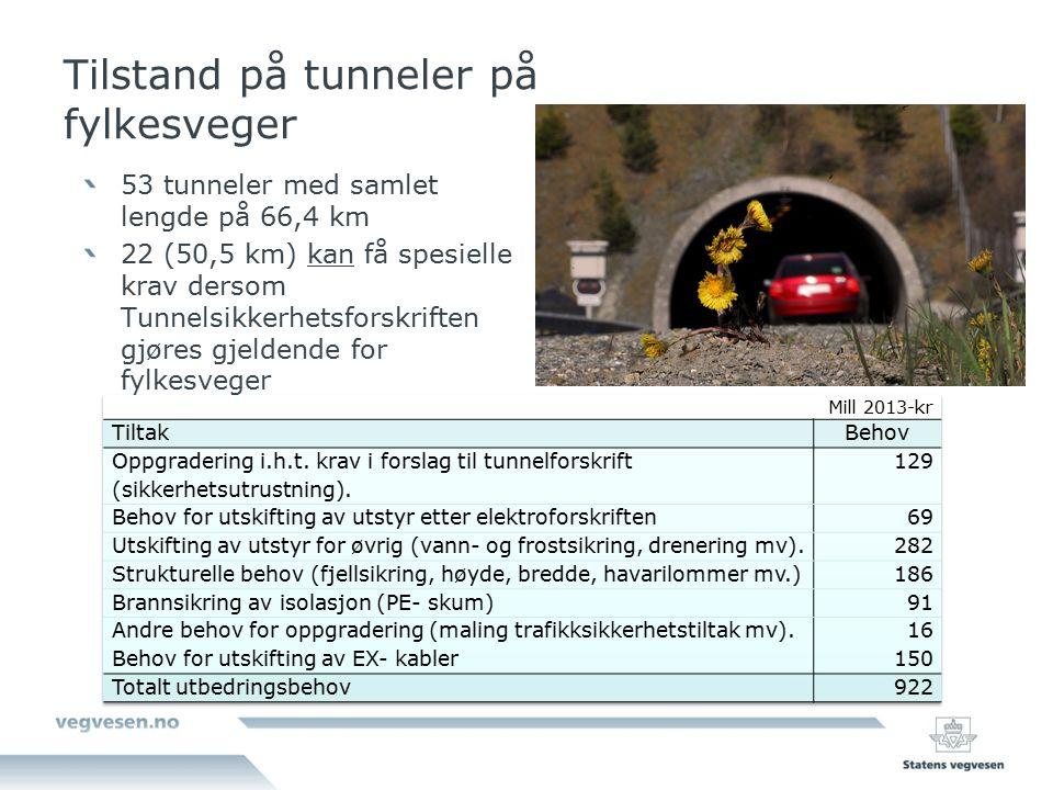 Tilstand på tunneler på fylkesveger 53 tunneler med samlet lengde på 66,4 km 22 (50,5 km) kan få spesielle krav dersom Tunnelsikkerhetsforskriften gjøres gjeldende for fylkesveger