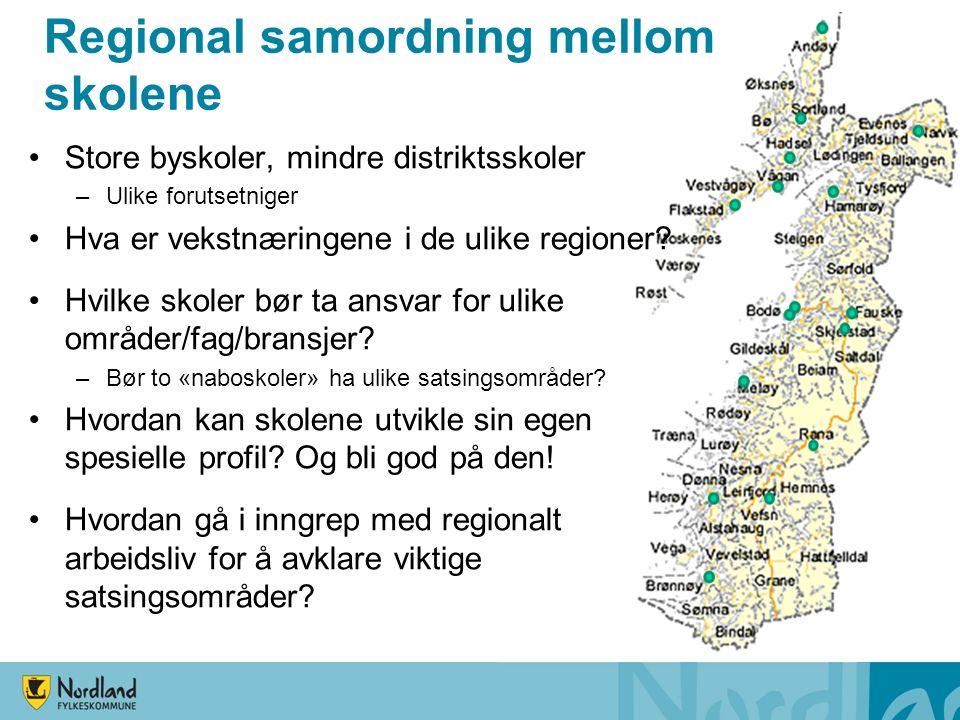 Regional samordning mellom skolene Store byskoler, mindre distriktsskoler –Ulike forutsetniger Hva er vekstnæringene i de ulike regioner? Hvilke skole
