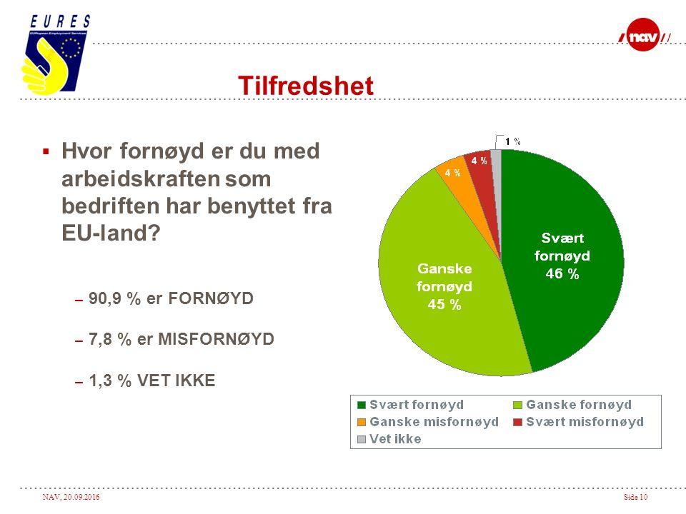 NAV, 20.09.2016Side 10 Tilfredshet  Hvor fornøyd er du med arbeidskraften som bedriften har benyttet fra EU-land.