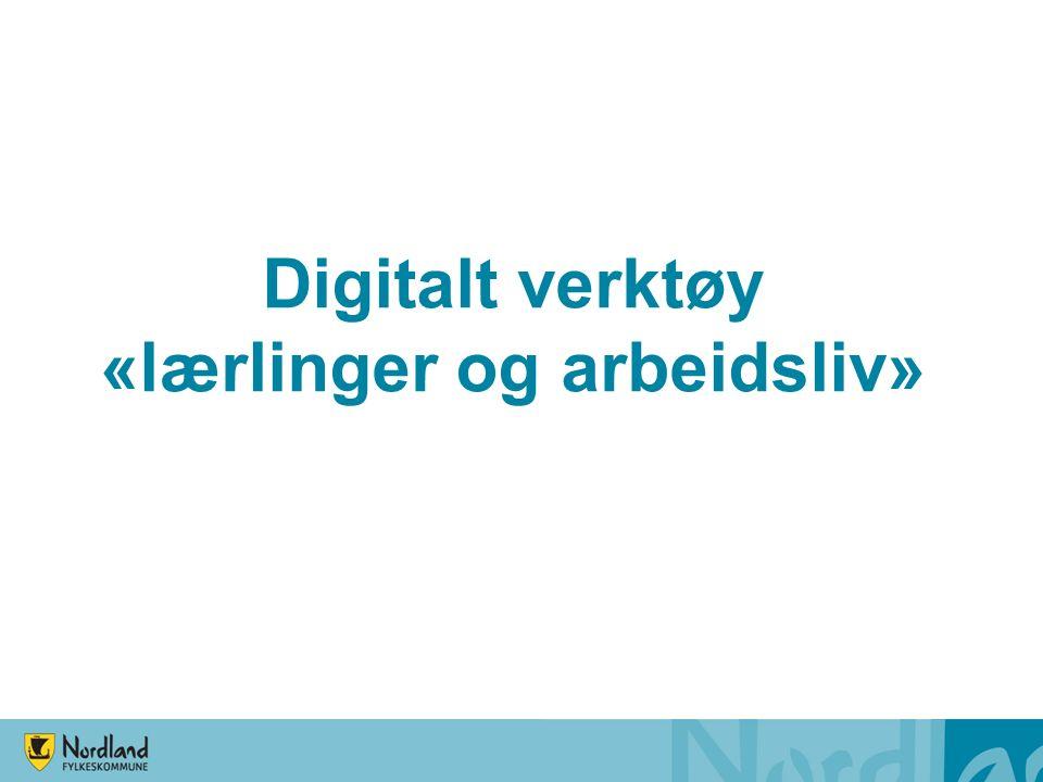 Digitalt verktøy «lærlinger og arbeidsliv»