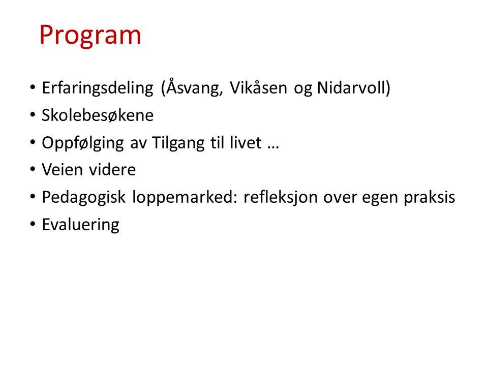 Program Erfaringsdeling (Åsvang, Vikåsen og Nidarvoll) Skolebesøkene Oppfølging av Tilgang til livet … Veien videre Pedagogisk loppemarked: refleksjon over egen praksis Evaluering