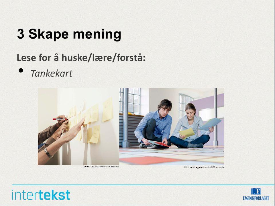3 Skape mening Lese for å huske/lære/forstå: Tankekart Serge Kozak/Corbis/NTB scanpix Michael Haegele/Corbis/NTB scanpix