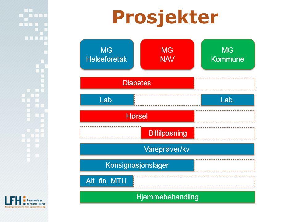 Prosjekter Hjemmebehandling MG Helseforetak MG Helseforetak MG NAV MG NAV MG Kommune MG Kommune Lab. Hørsel Diabetes Lab. Biltilpasning Vareprøver/kv