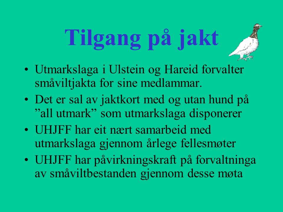 """Tilgang på jakt Utmarkslaga i Ulstein og Hareid forvalter småviltjakta for sine medlammar. Det er sal av jaktkort med og utan hund på """"all utmark"""" som"""