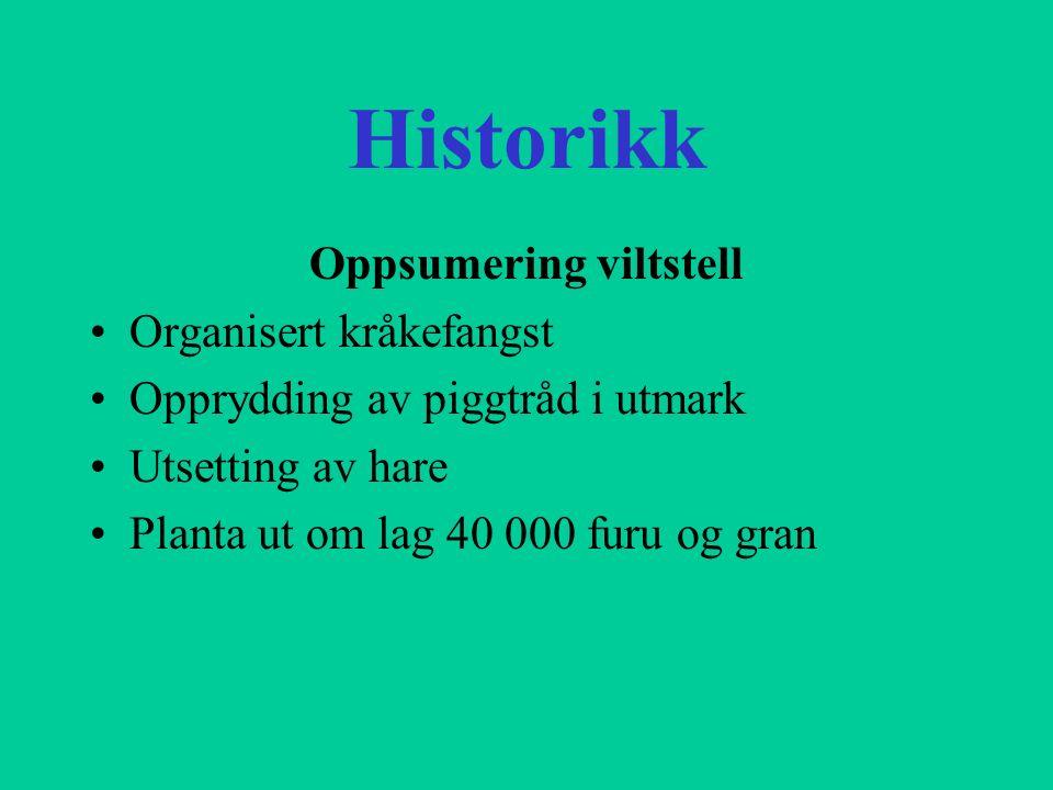 Historikk UHJFF har drive organisert leirdueskyting sidan 1969, første åra på gamleeidet Frå 1984 har vi drive skytinga i Hjørungavåg Noverande bane vart påbegynt i 1992