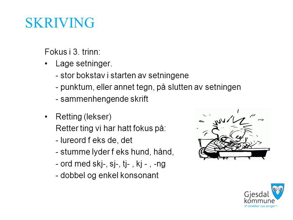 SKRIVING Fokus i 3. trinn: Lage setninger.