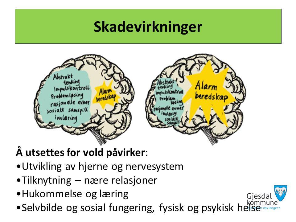 Skadevirkninger Å utsettes for vold påvirker: Utvikling av hjerne og nervesystem Tilknytning – nære relasjoner Hukommelse og læring Selvbilde og sosial fungering, fysisk og psykisk helse