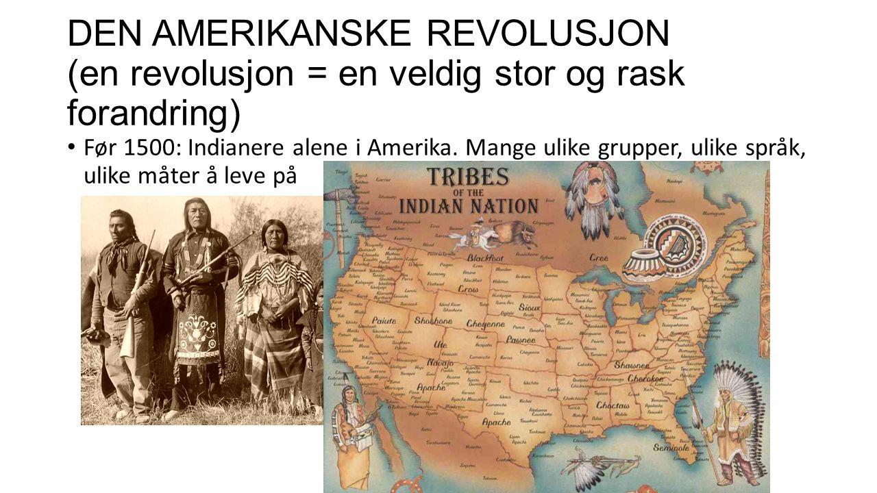 De hvite kommer til Amerika – 1500 Følger (konsekvenser/resultat): Veldig mange indianere dør av «hvite» sykdommer Mange indianere blir slaver, spes.