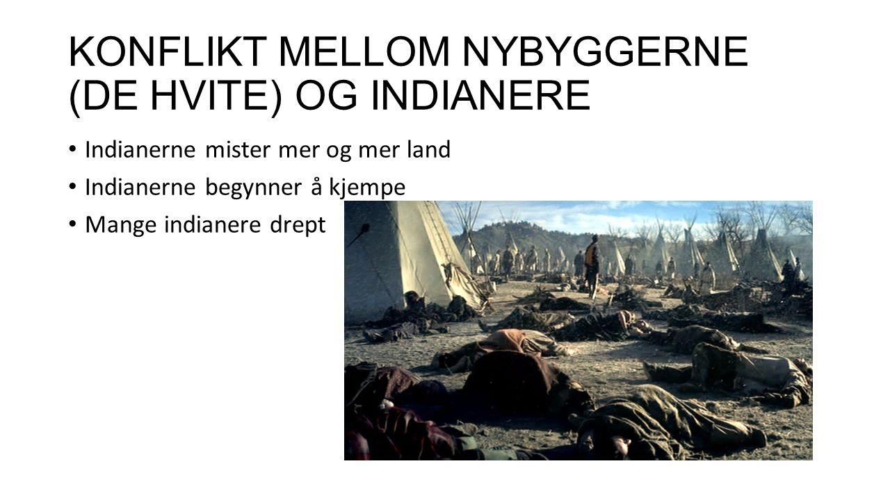 KONFLIKT MELLOM NYBYGGERNE (DE HVITE) OG INDIANERE Indianerne mister mer og mer land Indianerne begynner å kjempe Mange indianere drept