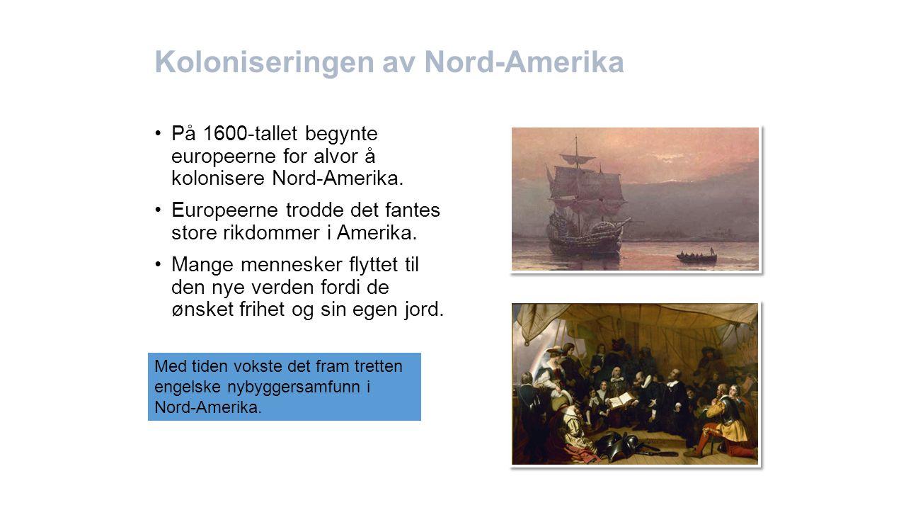 Koloniseringen av Nord-Amerika På 1600-tallet begynte europeerne for alvor å kolonisere Nord-Amerika. Europeerne trodde det fantes store rikdommer i A