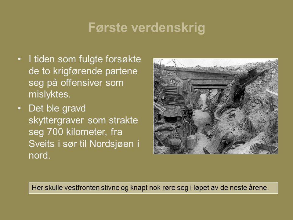 Første verdenskrig I tiden som fulgte forsøkte de to krigførende partene seg på offensiver som mislyktes.