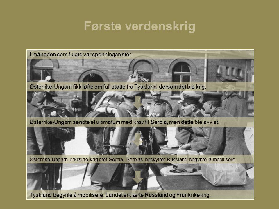 Første verdenskrig Østerrike-Ungarn fikk løfte om full støtte fra Tyskland dersom det ble krig.