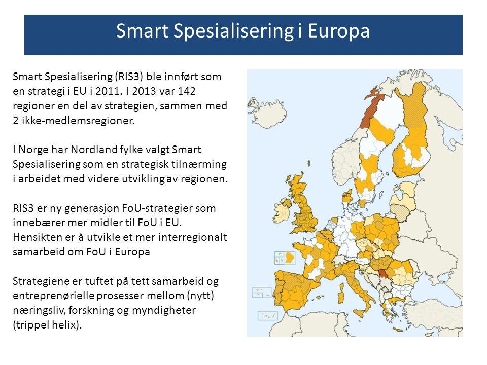 Smart Spesialisering (RIS3) ble innført som en strategi i EU i 2011. I 2013 var 142 regioner en del av strategien, sammen med 2 ikke-medlemsregioner.
