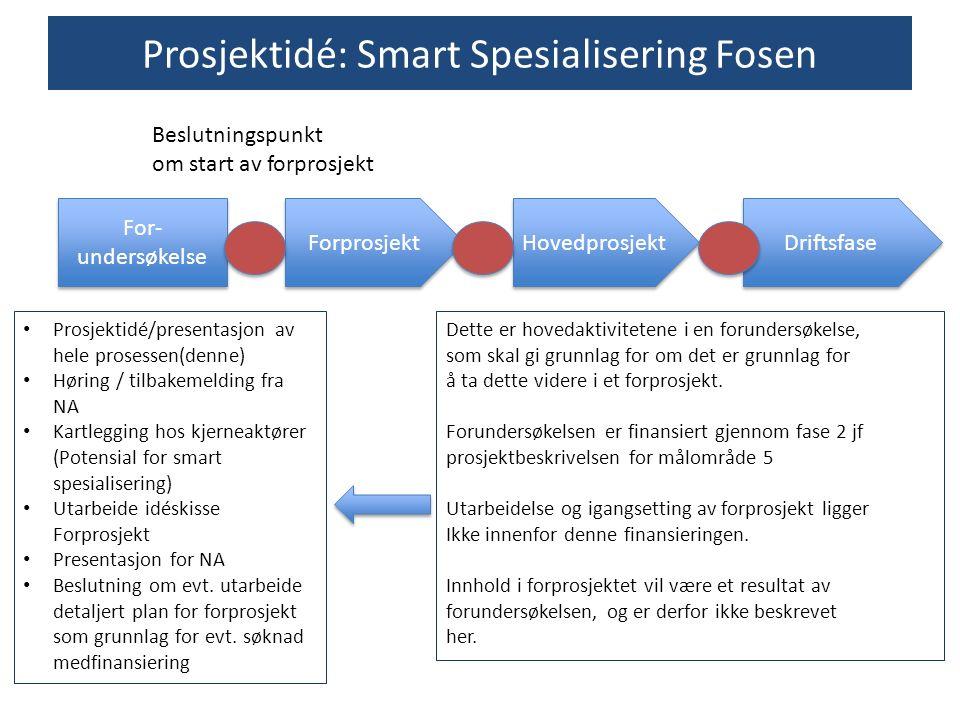 For- undersøkelse Forprosjekt Hovedprosjekt Driftsfase Prosjektidé: Smart Spesialisering Fosen Prosjektidé/presentasjon av hele prosessen(denne) Hørin