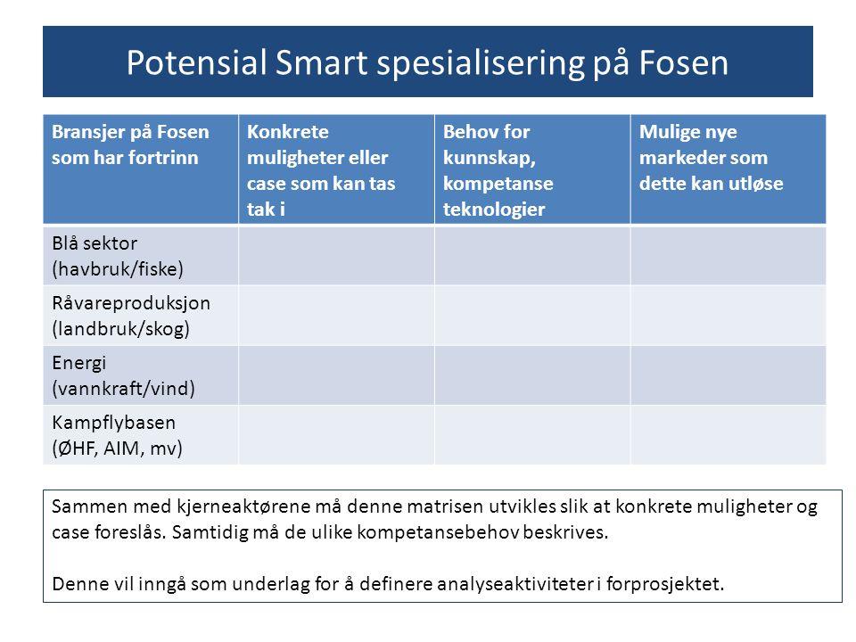 Potensial Smart spesialisering på Fosen Bransjer på Fosen som har fortrinn Konkrete muligheter eller case som kan tas tak i Behov for kunnskap, kompet