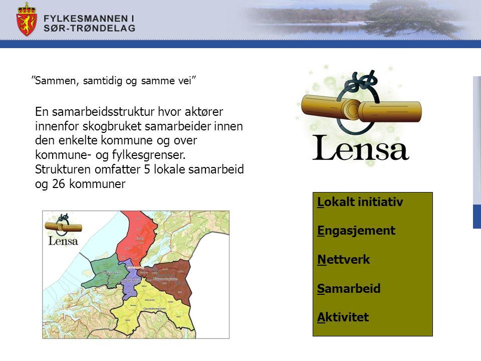 En samarbeidsstruktur hvor aktører innenfor skogbruket samarbeider innen den enkelte kommune og over kommune- og fylkesgrenser.