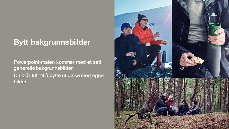 Bytt bakgrunnsbilder Powerpoint-malen kommer med et sett generelle bakgrunnsbilder.