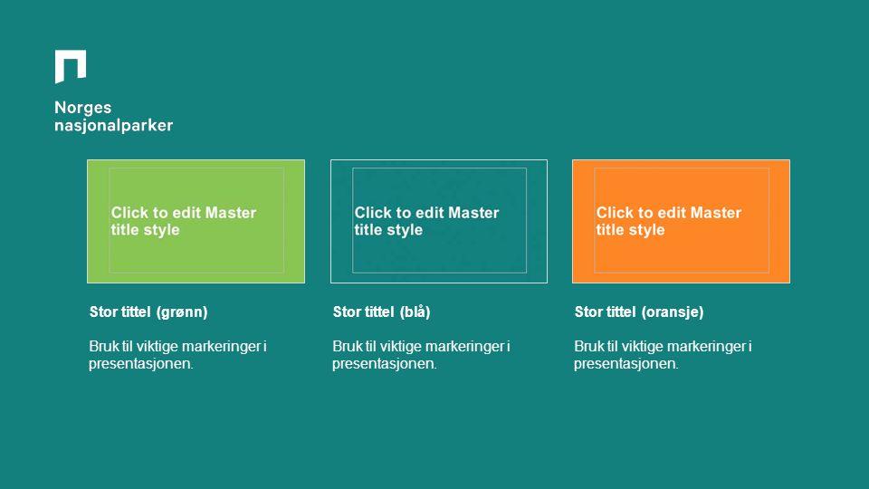 Stor tittel (grønn) Bruk til viktige markeringer i presentasjonen.