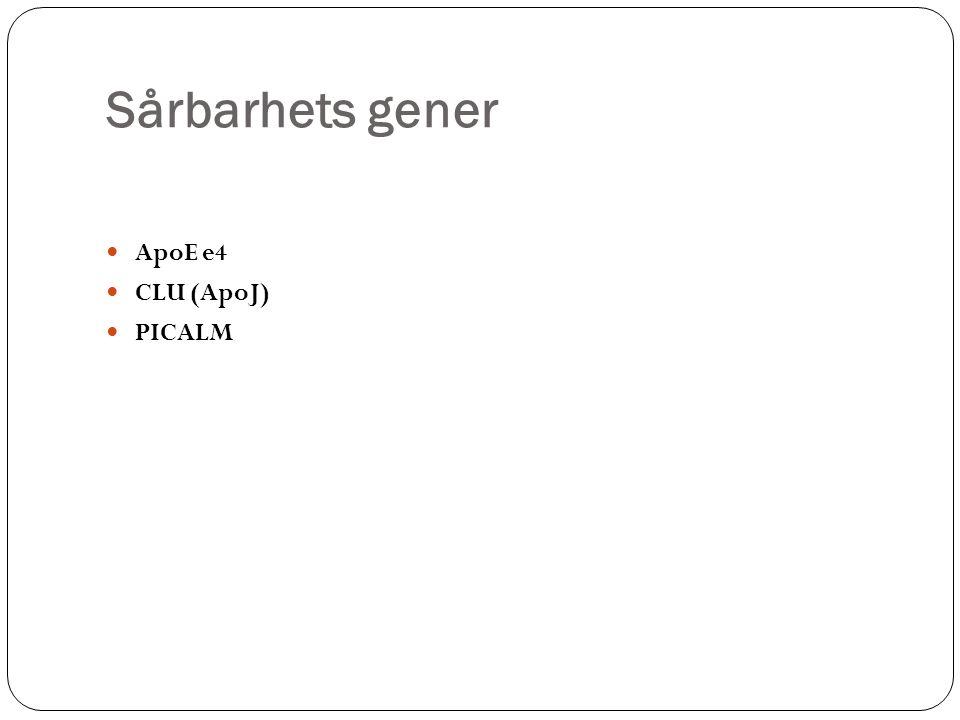 Sårbarhets gener ApoE e4 CLU (ApoJ) PICALM