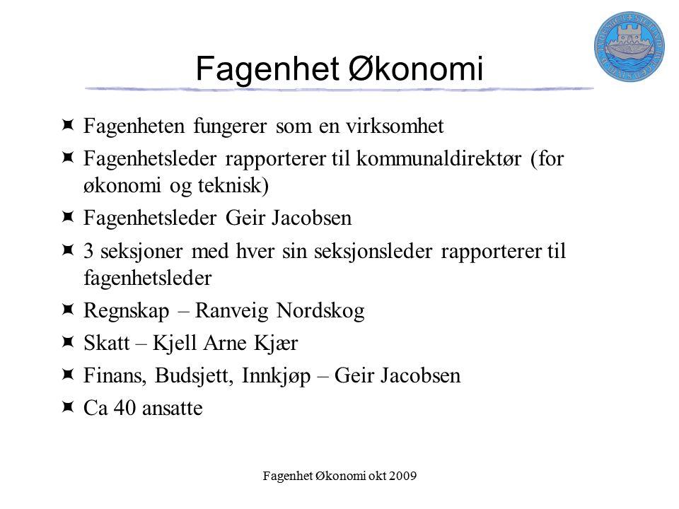 Fagenhet Økonomi okt 2009 Fagenhet Økonomi  Fagenheten fungerer som en virksomhet  Fagenhetsleder rapporterer til kommunaldirektør (for økonomi og t