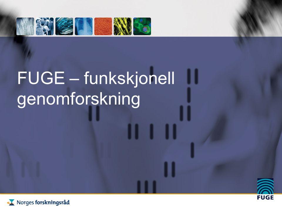 FUGE: Norges flaggskip innen bioteknologi - Levetid 2002 -2011 - Totalt budsjett: 1,5 milliarder -Nasjonal organisering og ansvarsfordeling -FUGE II fra 2007 - 2011