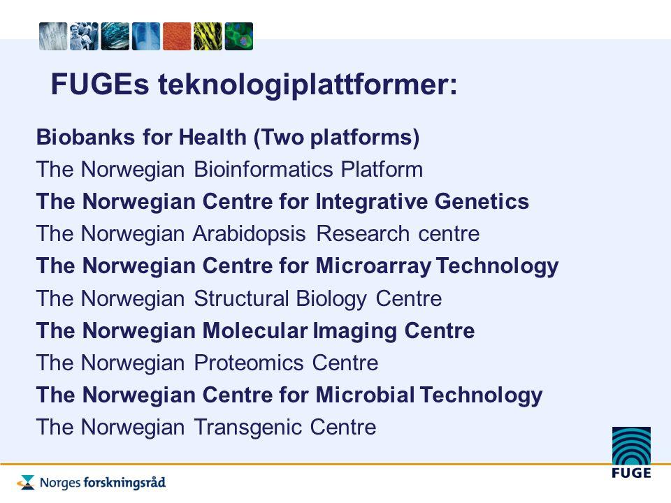 BRUKERUNDERSØKELSE FUGES TEKNOLOGIPLATTFORMER 2006: -Svært positiv tilbakemelding om FUGE og plattformene -Mer nasjonalt samarbeid -Plattformene/FUGE har ført til økt kvalitet på forskningen -For mange miljøer er plattformene så viktige at de ikke vil kunne fortsette sin forskning uten teknologiplattformene