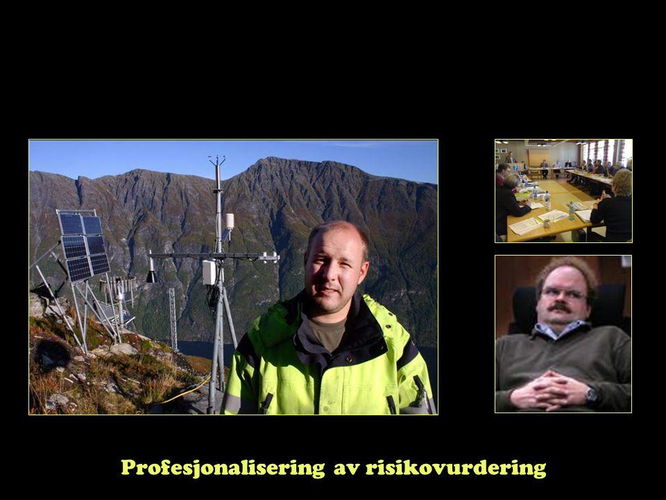 Profesjonalisering av risikovurdering