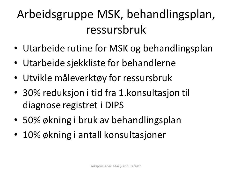 Arbeidsgruppe MSK, behandlingsplan, ressursbruk Utarbeide rutine for MSK og behandlingsplan Utarbeide sjekkliste for behandlerne Utvikle måleverktøy f