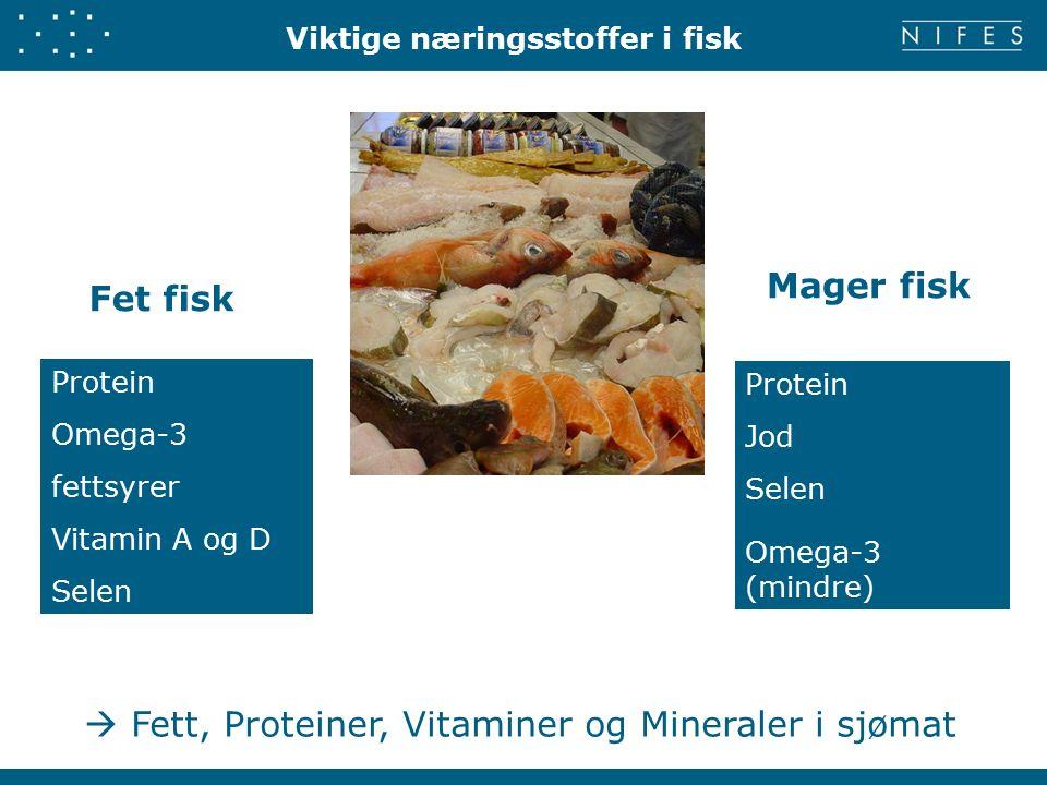 Viktige næringsstoffer i fisk Fet fisk Mager fisk Protein Omega-3 fettsyrer Vitamin A og D Selen Protein Jod Selen Omega-3 (mindre)  Fett, Proteiner, Vitaminer og Mineraler i sjømat
