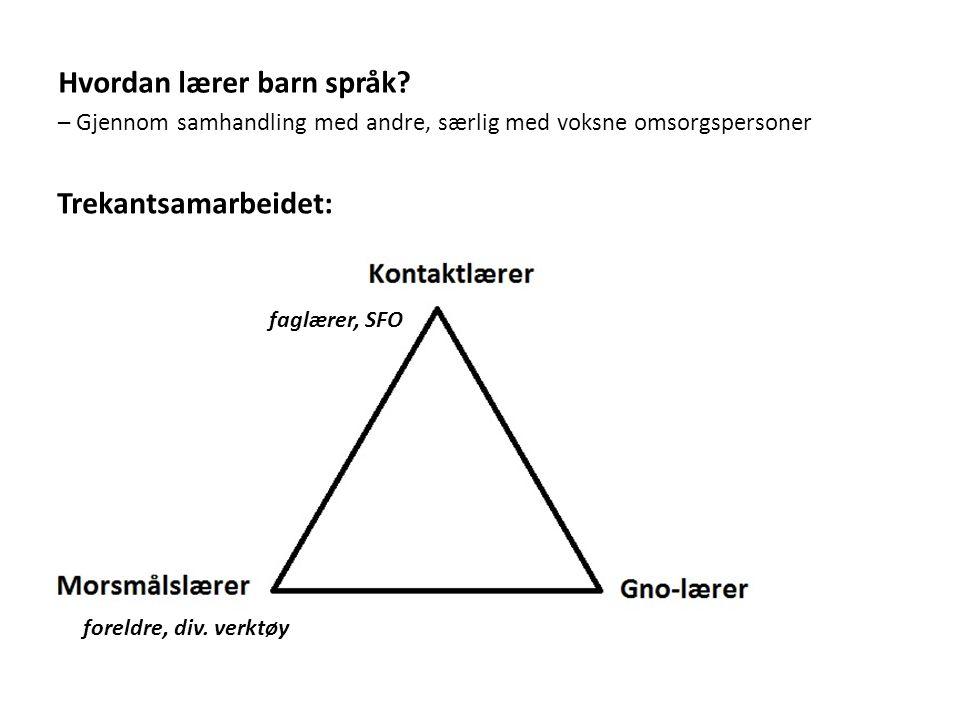 Trekantsamarbeidet: faglærer, SFO Hvordan lærer barn språk.