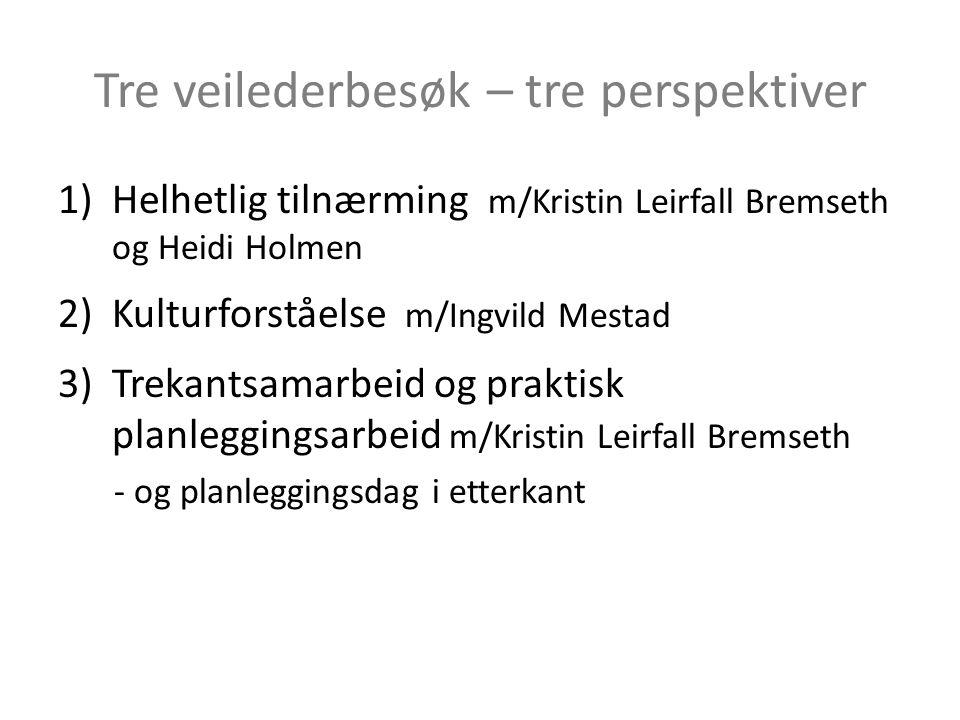 Tre veilederbesøk – tre perspektiver 1)Helhetlig tilnærming m/Kristin Leirfall Bremseth og Heidi Holmen 2)Kulturforståelse m/Ingvild Mestad 3)Trekants