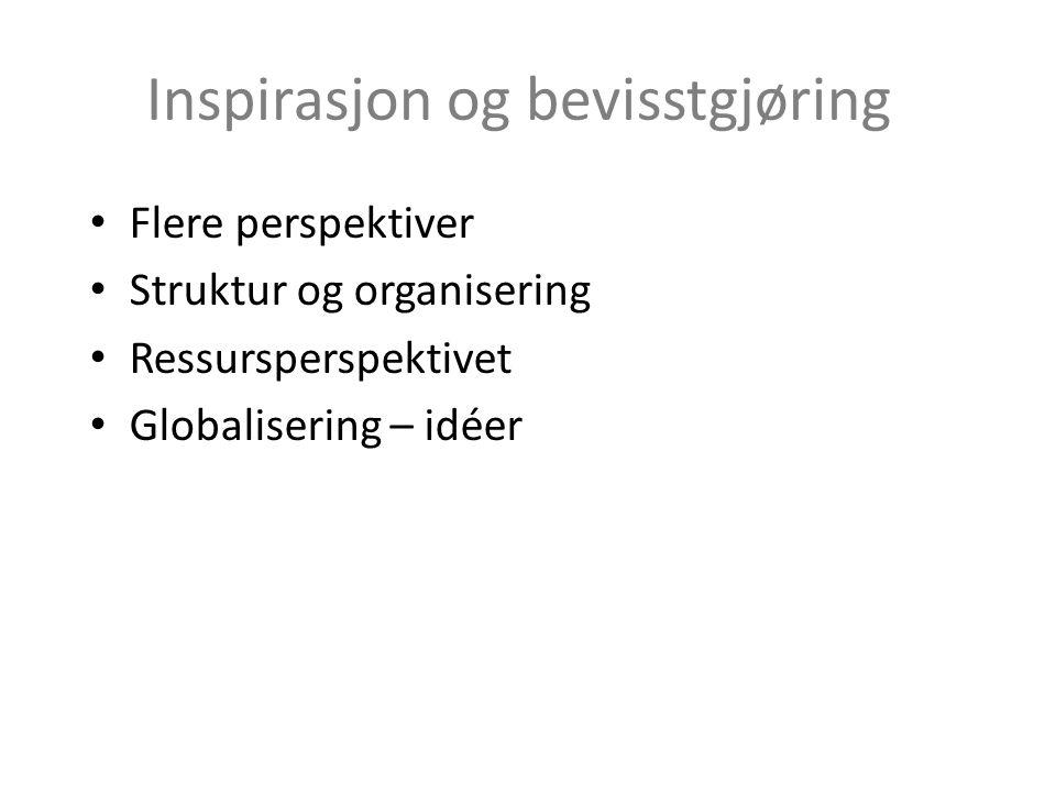 Inspirasjon og bevisstgjøring Flere perspektiver Struktur og organisering Ressursperspektivet Globalisering – idéer