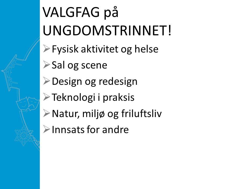 VALGFAG på UNGDOMSTRINNET!  Fysisk aktivitet og helse  Sal og scene  Design og redesign  Teknologi i praksis  Natur, miljø og friluftsliv  Innsa
