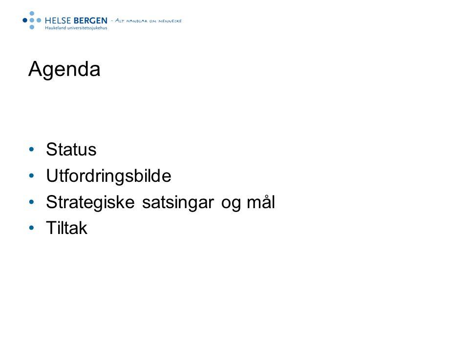 Agenda Status Utfordringsbilde Strategiske satsingar og mål Tiltak