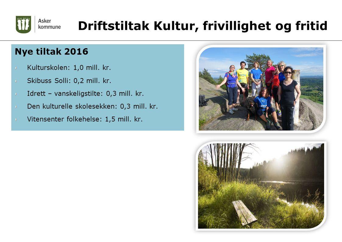 Driftstiltak Kultur, frivillighet og fritid Nye tiltak 2016 Kulturskolen: 1,0 mill.