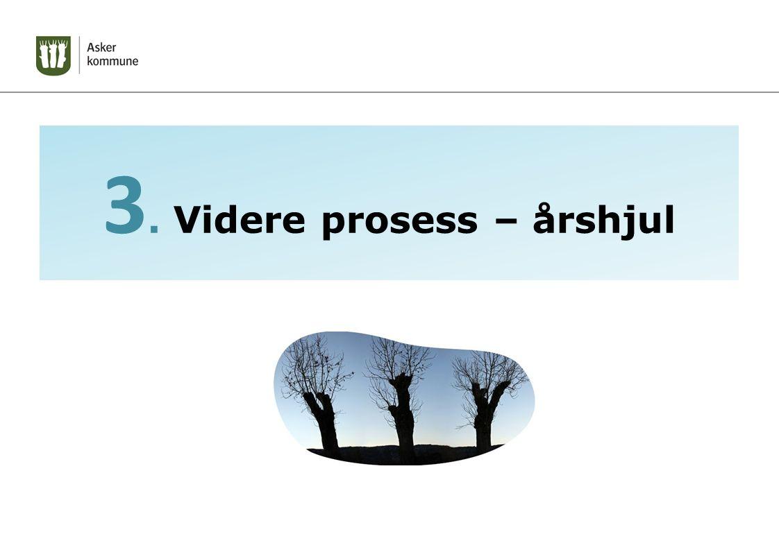 3. Videre prosess – årshjul