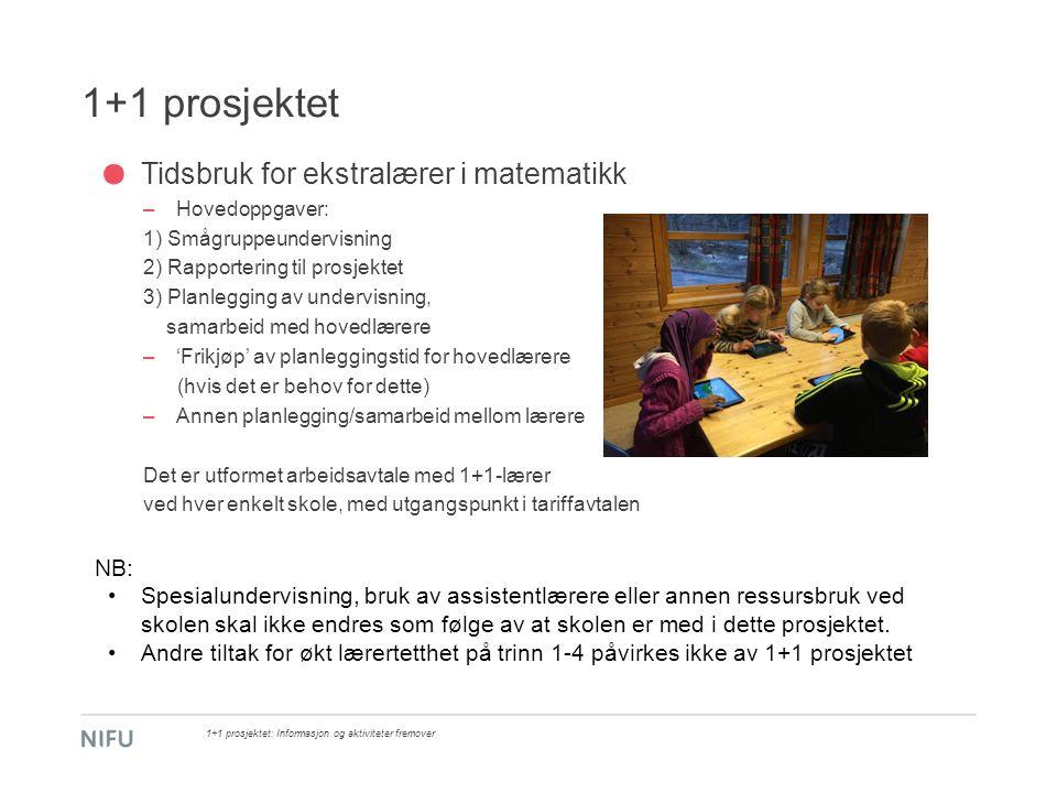 1+1 prosjektet Tidsbruk for ekstralærer i matematikk –Hovedoppgaver: 1) Smågruppeundervisning 2) Rapportering til prosjektet 3) Planlegging av undervi