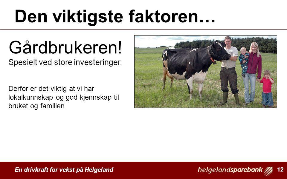 En drivkraft for vekst på Helgeland Den viktigste faktoren… 12 Gårdbrukeren! Spesielt ved store investeringer. Derfor er det viktig at vi har lokalkun