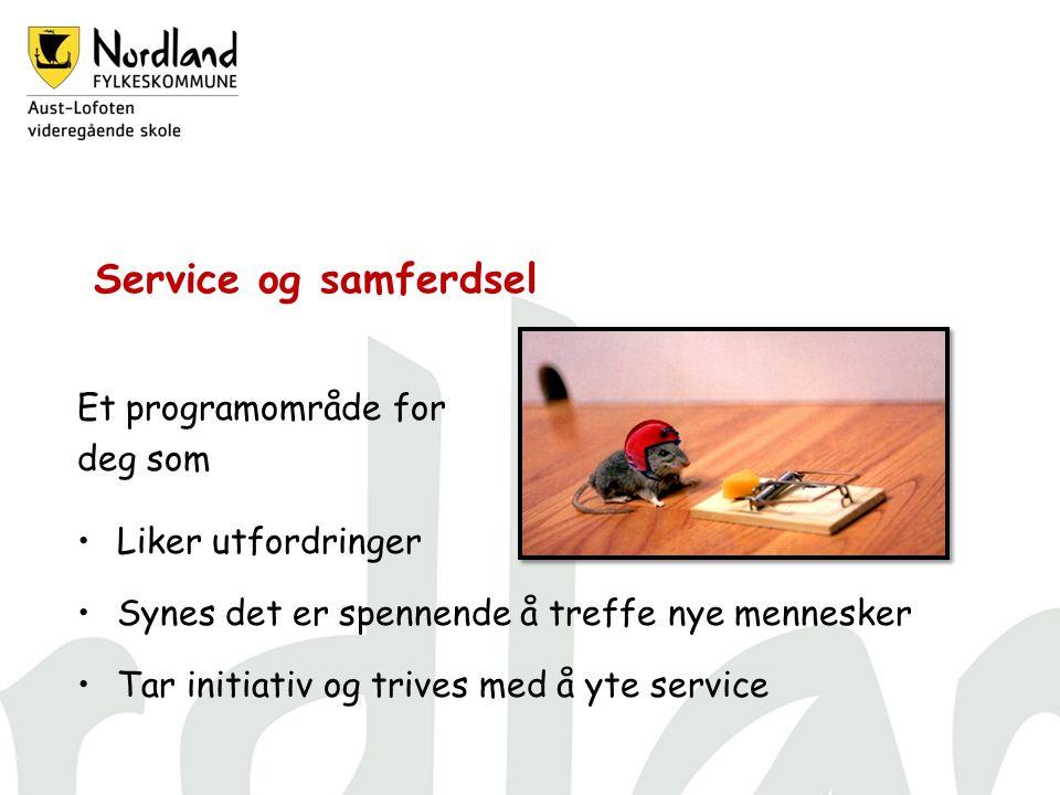 Service og samferdsel Et programområde for deg som Liker utfordringer Synes det er spennende å treffe nye mennesker Tar initiativ og trives med å yte service
