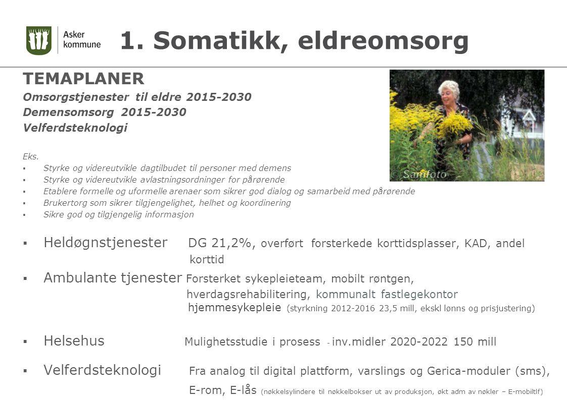1. Somatikk, eldreomsorg TEMAPLANER Omsorgstjenester til eldre 2015-2030 Demensomsorg 2015-2030 Velferdsteknologi Eks.  Styrke og videreutvikle dagti
