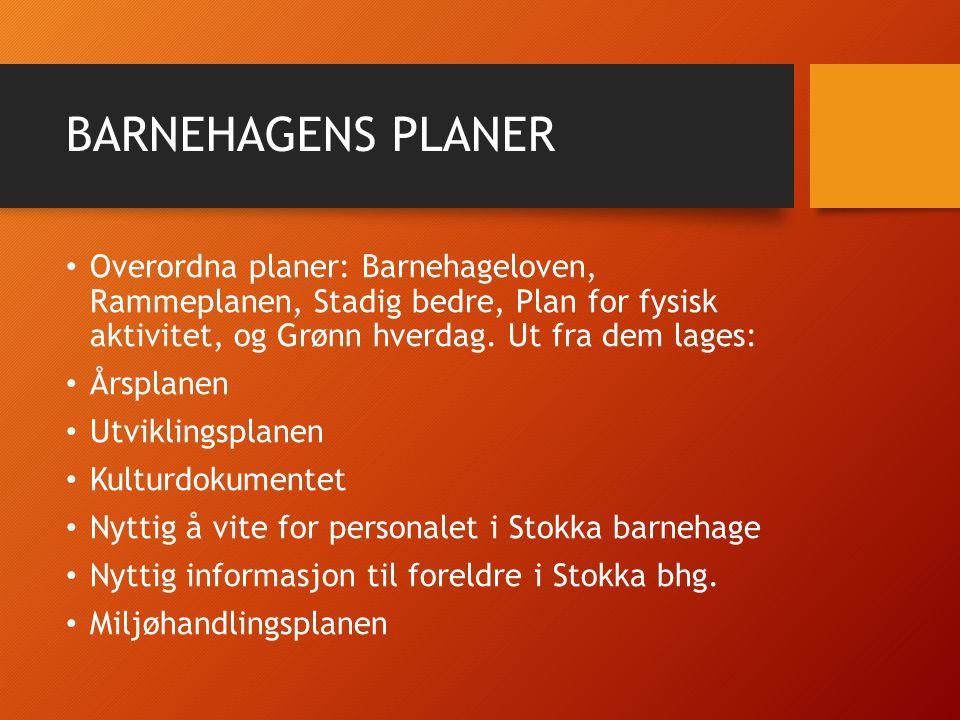BARNEHAGENS PLANER Overordna planer: Barnehageloven, Rammeplanen, Stadig bedre, Plan for fysisk aktivitet, og Grønn hverdag.
