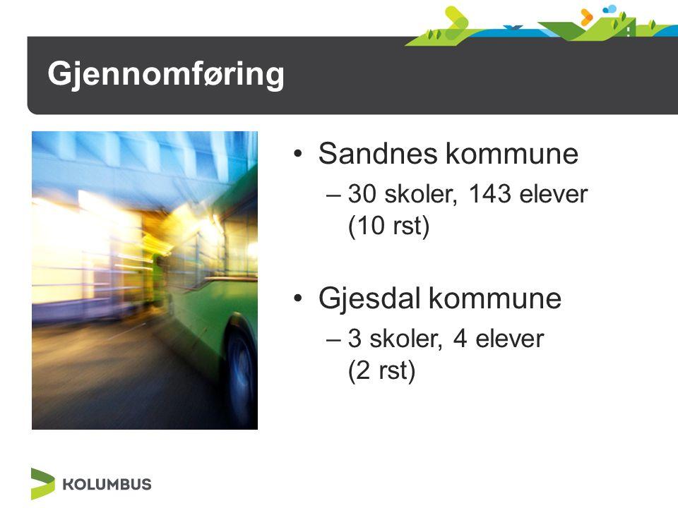 Gjennomføring Sandnes kommune –30 skoler, 143 elever (10 rst) Gjesdal kommune –3 skoler, 4 elever (2 rst)
