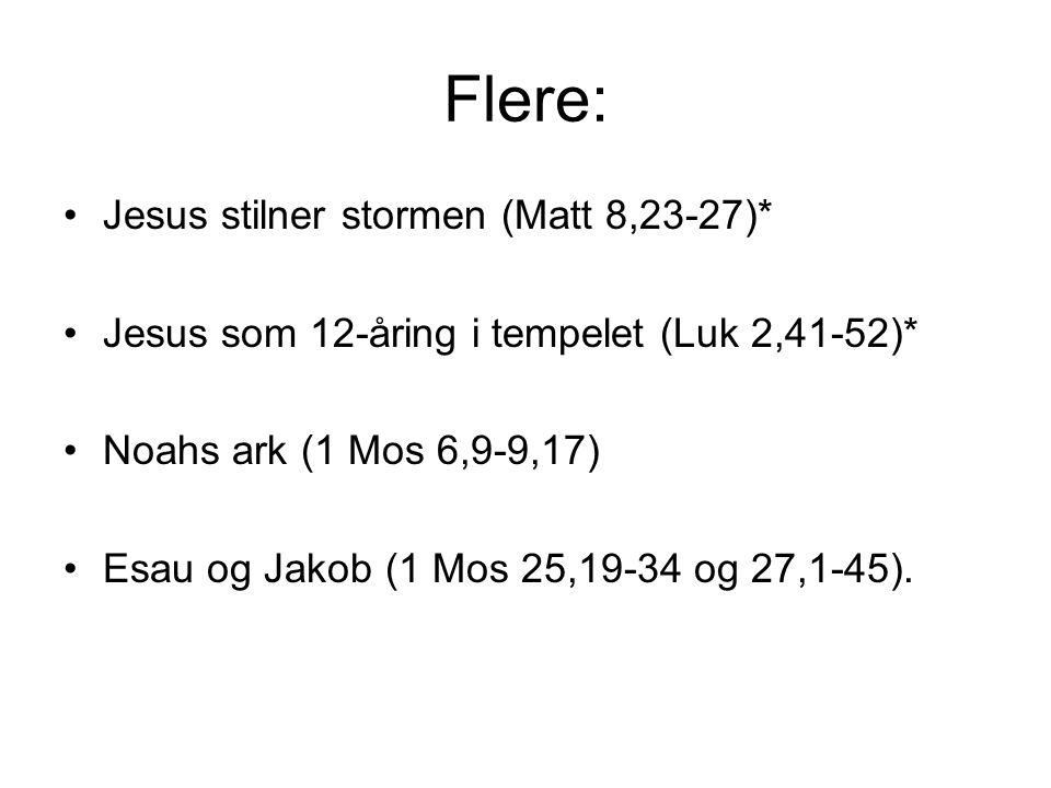 Flere: Jesus stilner stormen (Matt 8,23-27)* Jesus som 12-åring i tempelet (Luk 2,41-52)* Noahs ark (1 Mos 6,9-9,17) Esau og Jakob (1 Mos 25,19-34 og