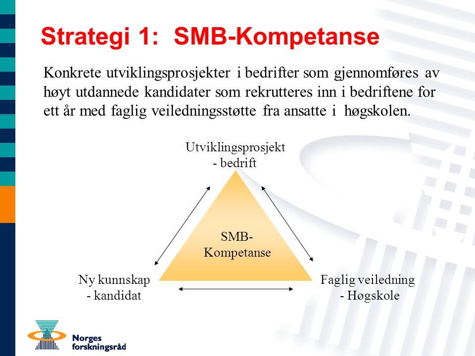 Strategi 1: SMB-Kompetanse Konkrete utviklingsprosjekter i bedrifter som gjennomføres av høyt utdannede kandidater som rekrutteres inn i bedriftene for ett år med faglig veiledningsstøtte fra ansatte i høgskolen.