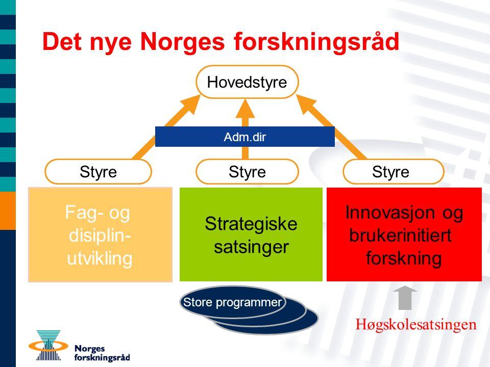 Store programmer Fag- og disiplin- utvikling Innovasjon og brukerinitiert forskning Strategiske satsinger Hovedstyre Styre Store programmer Det nye No