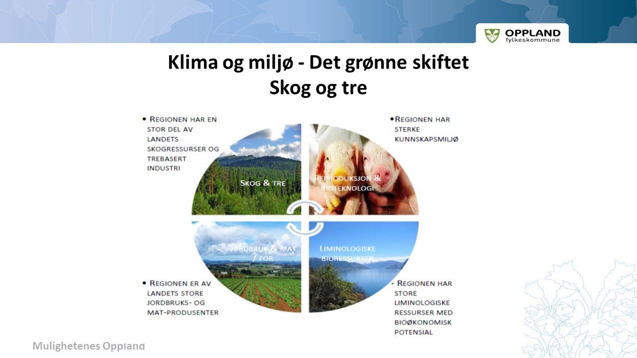 Mulighetenes Oppland Klima og miljø - Det grønne skiftet Skog og tre