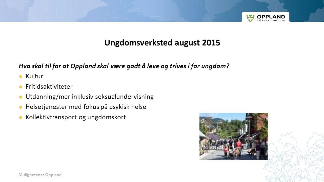 Mulighetenes Oppland Ungdomsverksted august 2015 Hva skal til for at Oppland skal være godt å leve og trives i for ungdom.