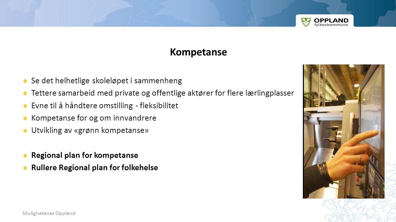 Mulighetenes Oppland Kompetanse Se det helhetlige skoleløpet i sammenheng Tettere samarbeid med private og offentlige aktører for flere lærlingplasser Evne til å håndtere omstilling - fleksibilitet Kompetanse for og om innvandrere Utvikling av «grønn kompetanse» Regional plan for kompetanse Rullere Regional plan for folkehelse