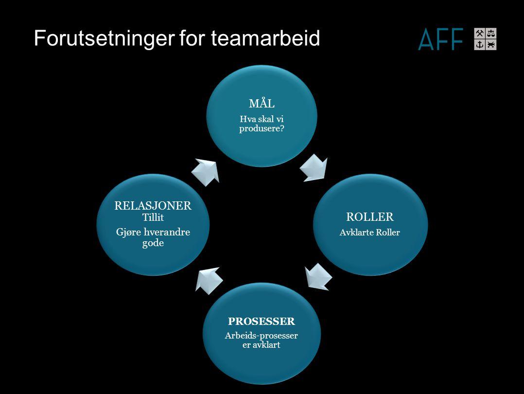 Forutsetninger for teamarbeid