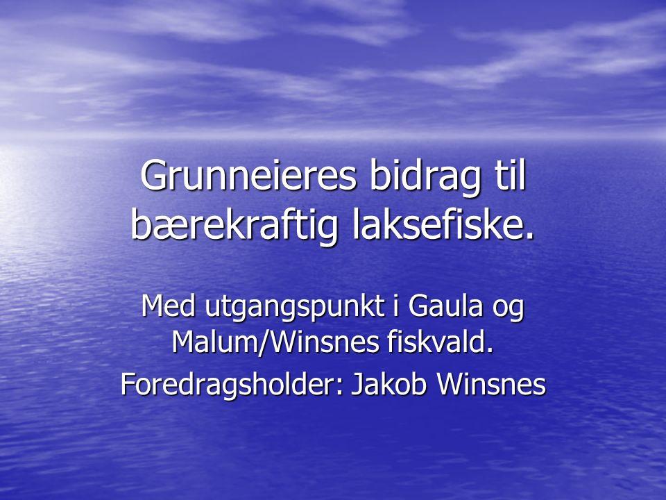 Malum/Winsnes fiskvald: Malum/Winsnes fiskvald: Over 2 km strandlinje (2km på ene sida og 2,5 på andre) Over 2 km strandlinje (2km på ene sida og 2,5 på andre) 6 høler 6 høler 15 grunneiere 15 grunneiere Leier bort 4 høler til fiskeformidler (GFF) Leier bort 4 høler til fiskeformidler (GFF) Omsetningsøkning fra cirka 30`på slutten av 70-tallet til over 500`i dag Omsetningsøkning fra cirka 30`på slutten av 70-tallet til over 500`i dag Største bidragsyter til Elvene rundt Trondheimsfjorden i 2005 (50`kr.) Største bidragsyter til Elvene rundt Trondheimsfjorden i 2005 (50`kr.) Fritt kortsalg der vi disponerer bare en side (300 kr/døgn på 2 høler) Fritt kortsalg der vi disponerer bare en side (300 kr/døgn på 2 høler) Innenbygdsboende med sesongkort (1500.-kr) og grunneiere kan fiske også på bortleid område 1 dgn/uke + på frisone hele uka Innenbygdsboende med sesongkort (1500.-kr) og grunneiere kan fiske også på bortleid område 1 dgn/uke + på frisone hele uka Eier en av de mest populære fluefiskehølene i Gaula, Kroken, som har hatt fangster på over 750 kg pr sesong.